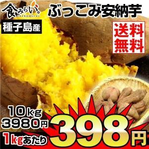 安納芋 種子島産 ふぞろい安納芋 10kg1箱 送料無料 ご家庭用 さつまいも 数量限定|kokkaen