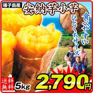 種子島産 安納芋 小芋 5kg 1組
