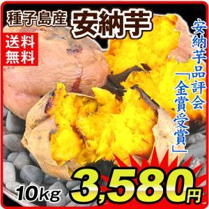 安納芋 大特価 種子島産 訳あり安納芋 10kg 徳用 さつまいも 食品 グルメ 国華園|kokkaen
