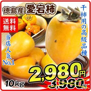 柿 かき 徳島産 愛宕柿 大特価 「干柿用渋柿」 10kg 果物 食品 国華園|kokkaen