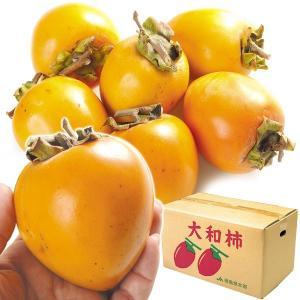 柿 かき 徳島産 大和柿 「干柿用渋柿」 10kg ご家庭用 果物 食品 国華園|kokkaen