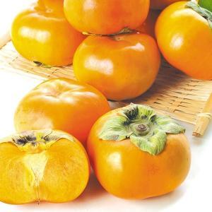 柿 かき 三重・愛知産 次郎柿 約10kg ご家庭用 果物 食品 国華園|kokkaen