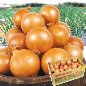 たまねぎ 淡路島産 玉ねぎ 10kg 玉ねぎ 野菜 玉葱 タマネギ 食品 グルメ 国華園|kokkaen