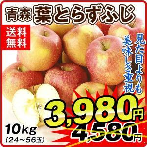 りんご 青森産 ご家庭用 葉とらずふじ(10kg)26〜50玉 林檎 フルーツ 国華園|kokkaen