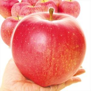 りんご 青森産 世界一(10kg)16〜40玉 大玉 せかいいち 特大 世界最大級 希少品種 林檎 フルーツ 国華園|kokkaen