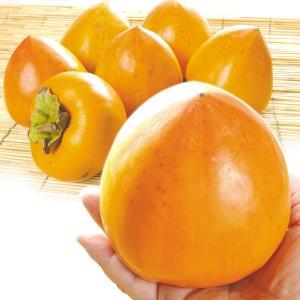柿 かき 奈良産 江戸柿 「干柿用渋柿」 10kg ご家庭用 果物 食品 国華園|kokkaen