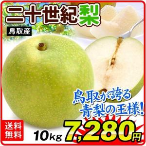 梨 鳥取産 お買得 二十世紀梨(10kg)16〜36玉 青梨の王様 にじゅっせいき なし 和梨 果物 フルーツ 国華園|kokkaen