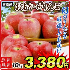 りんご 青森産 徳用 おまかせりんご(10kg)1箱 ご家庭用(赤りんご or 青りんごからお選びください) 林檎 数量限定 品種おまかせ フルーツ 果物 国華園|kokkaen