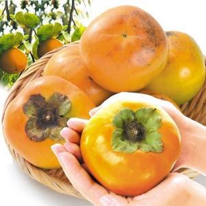 柿 福岡産 太秋 約8kg1箱 フルーツ 果物 国華園|kokkaen