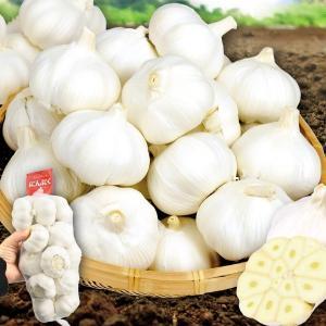 にんにく 大特価 中国産 にんにく 5kg1組(1kg×5袋) 野菜 国華園|kokkaen