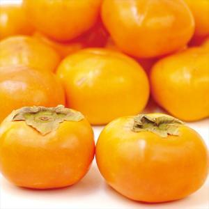 柿 かき 大特価 山形産 訳あり 庄内柿 (10kg) ご家庭用 数量限定 果物  国華園|kokkaen