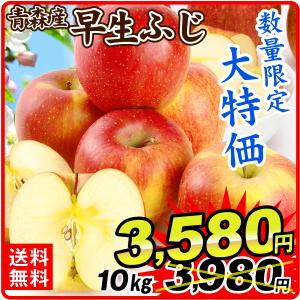 りんご 大特価 青森産 早生ふじ(10kg)24〜56玉 ご家庭用 数量限定 フルーツ 果物 林檎 国華園|kokkaen