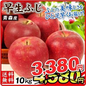 りんご お買得 青森産 早生ふじ(10kg)徳用 ご家庭用 数量限定 フルーツ 果物 林檎 国華園|kokkaen