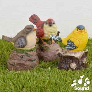 ガーデンオーナメント 動物 鳴き声つき さえずり小鳥セット 3種1組|kokkaen