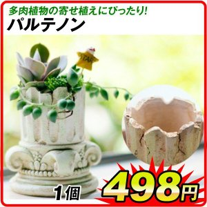 今流行の多肉植物の寄せ植えにぴったりの、おしゃれなポリ製植木鉢。  ●商品情報 ギリシャ建築のような...