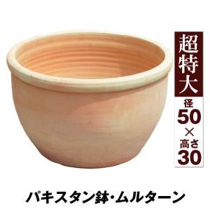 鉢 植木鉢 テラコッタ 素焼鉢 おしゃれ パキスタン鉢・ムルターン 超特大 1個|kokkaen