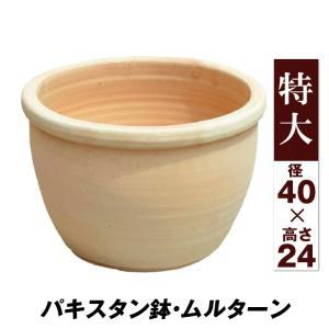 鉢 植木鉢 テラコッタ 素焼鉢 おしゃれ パキスタン鉢・ムルターン 特大 1個|kokkaen