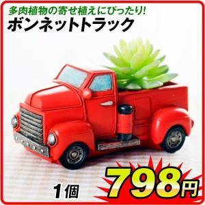 鉢 植木鉢 ポリ製 多肉植物 寄せ植え かわいい プチオアシス・ボンネットトラック 1個 女性 プレゼント 国華園