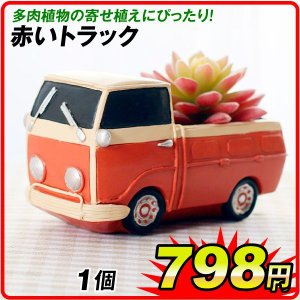 鉢 植木鉢 ポリ製 多肉植物 寄せ植え かわいい プチオアシス・赤いトラック 1個 女性 プレゼント 国華園