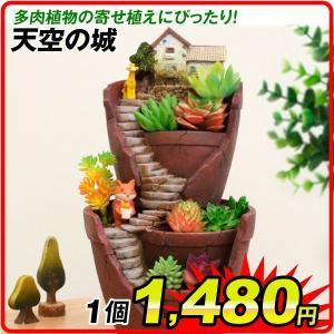 鉢 植木鉢 ポリ製 多肉植物 寄せ植え かわいい プチオアシス・天空の城 1個 女性 プレゼント|kokkaen