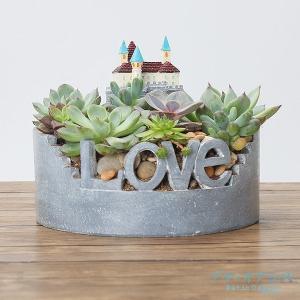 鉢 植木鉢 ポリ製 多肉植物 寄せ植え かわいい プチオアシス・愛の園 1個