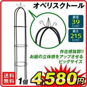 オベリスク・トール 1個組 直径40・高さ215 ガーデニング 誘引 アイアン 鉄製|kokkaen