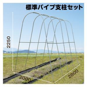 園芸支柱 支柱 新型 パイプ支柱 標準パイプ支柱セット 1組|kokkaen