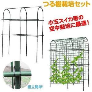 園芸支柱 支柱 つる棚栽培セット 1組