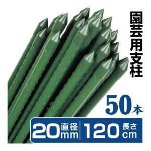 園芸支柱 支柱 農業用支柱 Φ20mm×120cm 50本 鋼管製 イボ竹|kokkaen