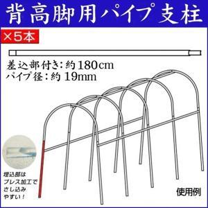 園芸支柱 支柱 パイプ支柱 背高脚用パイプ支柱(差込部付き) 5本|kokkaen