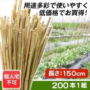 園芸支柱 支柱 送料無料 【個人宅配達不可】 天然竹支柱 150cm 200本組|kokkaen