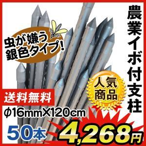 園芸支柱 支柱 農業用支柱 シルバー Φ16mm×120cm 50本  鋼管製 イボ竹|kokkaen