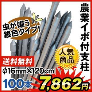 園芸支柱 支柱 農業用支柱 シルバー Φ16mm×120cm 100本  鋼管製 イボ竹|kokkaen