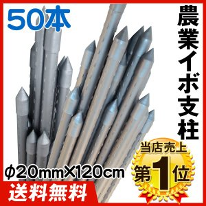 園芸支柱 支柱 農業用支柱 シルバー Φ20mm×120cm 50本 鋼管製 イボ竹|kokkaen