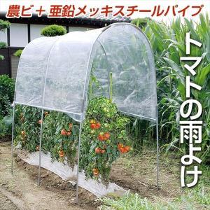 雨よけセット トマトの屋根 1組 農業用ビニール 亜鉛メッキスチールパイプ|kokkaen