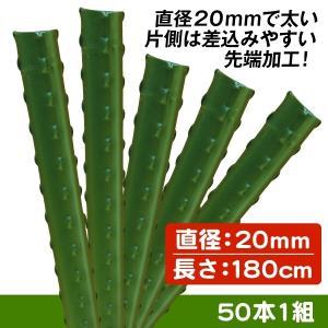 園芸支柱 支柱 ≪代引不可≫ 果樹用イボ竹 直径20mm・長さ180cm 50本1組|kokkaen
