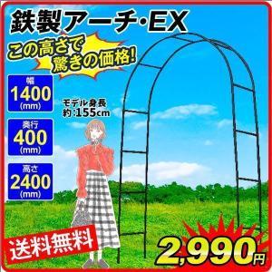 バラアーチ 鉄製アーチEX 1個 ガーデンアーチ ローズアーチ ガーデニング  幅140・奥行40・高さ240 kokkaen