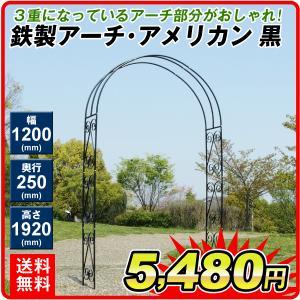 アーチ バラアーチ 鉄製アーチ・アメリカン 1個 ガーデンアーチ ローズアーチ ガーデニング 庭 ガーデン|kokkaen