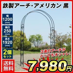 アーチ バラアーチ 鉄製アーチ・アメリカン 2個 ガーデンアーチ ローズアーチ ガーデニング 庭 ガーデン|kokkaen