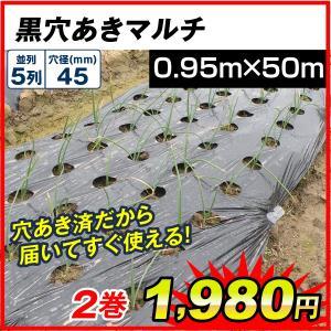 サイズ豊富!植え付け用穴付きで便利!  商品情報 ●サイズ(約): 幅:0.95m、長さ:50m、株...