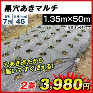 サイズ豊富!植え付け用穴付きで便利!  商品情報 ●サイズ(約): 幅:1.35m、長さ:50m、株...