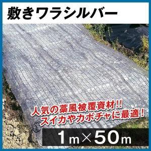 農業用マルチ マルチング材 敷きワラシルバー 1m×50m 1巻1組|kokkaen