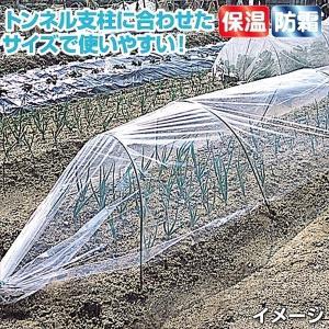 農業用フィルム トンネルフィルム 1.8×30m 1巻|kokkaen