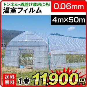 ビニール フィルム 温室フィルム(0.06mm) 4m×50m 1巻 被覆資材 農業用フィルム|kokkaen