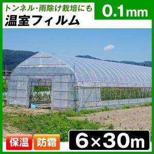 ビニール フィルム 温室フィルム(0.1mm) 6m×30m 1巻 被覆資材 農業用フィルム|kokkaen