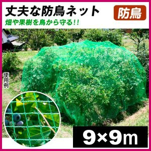 防鳥 鳥よけ 丈夫な防鳥ネット 9×9m 1枚1組|kokkaen