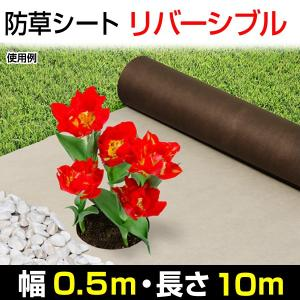 防草シート リバーシブル防草シート 茶色&ベージュ 0.5×10m 1巻1組 kokkaen