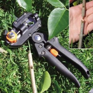 プロ用接木鋏 1個|kokkaen