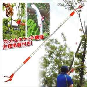 伸縮式高枝キャッチ切鋏 1個|kokkaen