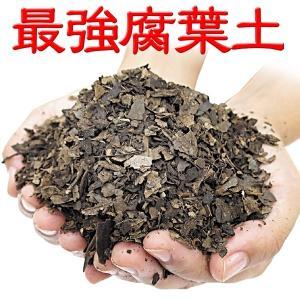 最強腐葉土粗目 100L 1袋|kokkaen
